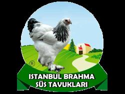 Brahma Kümesi
